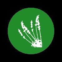 Quand l'agriculture biologique devient une évidence… mais pas pour tout le monde