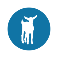 Abattoirs paysans – Éleveurs, consommateurs, tous engagés! pour une fin digne des animaux