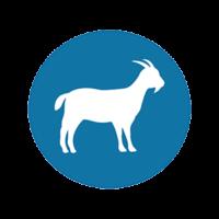 L'identification des petits ruminants va changer