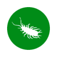 Gestion du fumier et du compost : fiches techniques en ligne!