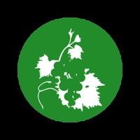 Impact du Cuivre sur la biodiversité des sols viticoles: résultats d'étude
